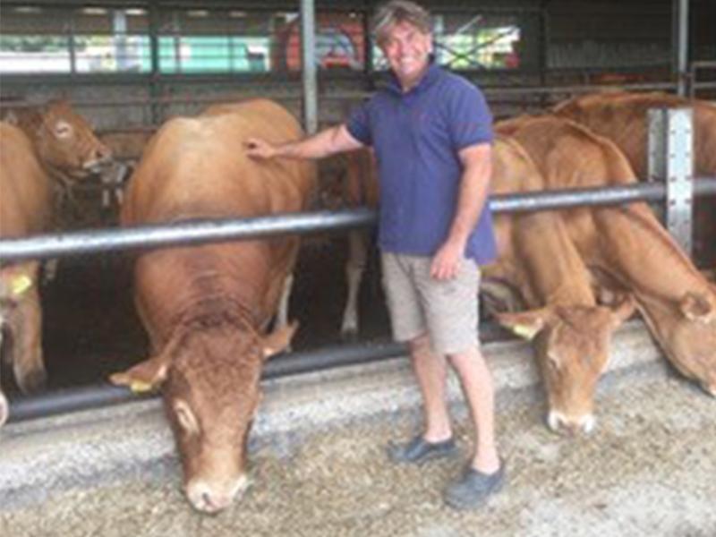 Huijben Natuurvlees boerderij