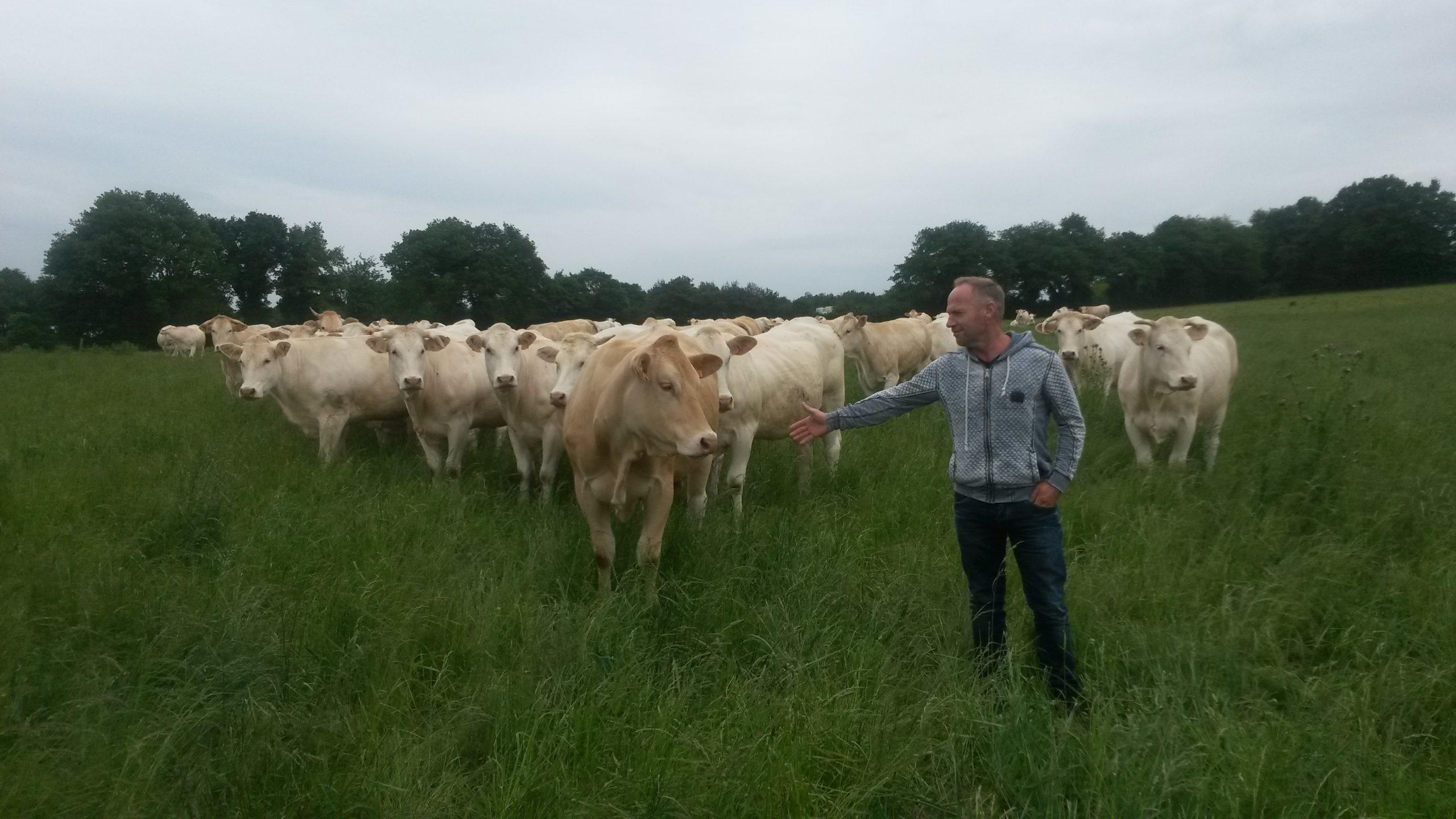 Natuurvleesboerderij van Zandwijk